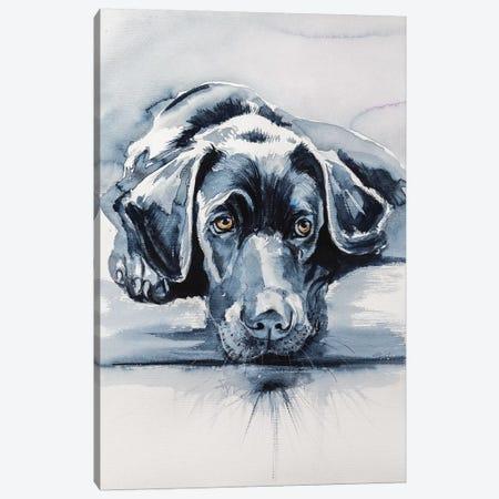 Black Labrador Canvas Print #AKV9} by Anna Brigitta Kovacs Canvas Artwork