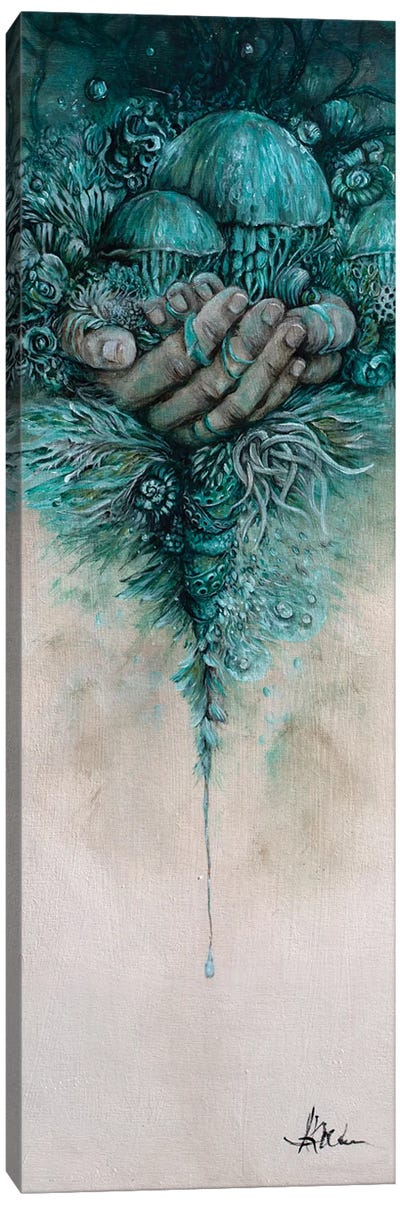 The Precarious Nature Of Ambivalence Canvas Art Print