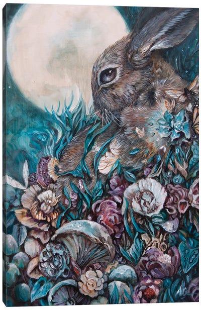 Down The Rabbit Hole Canvas Art Print
