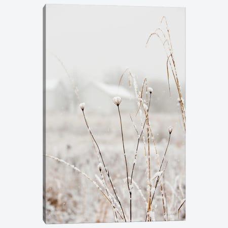 Early Snow Canvas Print #ALD112} by Aledanda Canvas Artwork
