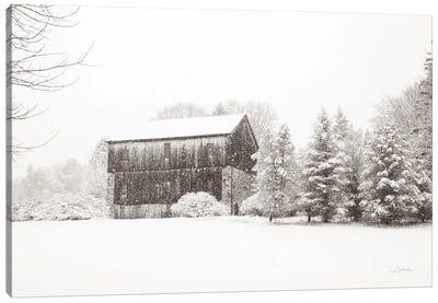 First Snow Bw Crop Canvas Art Print