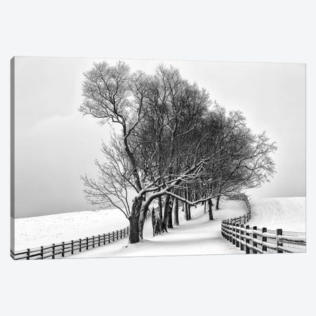 Along The Lane I 3-Piece Canvas #ALD2} by Aledanda Canvas Art