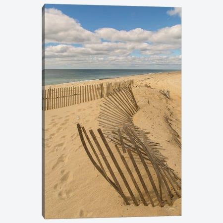 Beach Dunes II Canvas Print #ALD45} by Aledanda Canvas Artwork