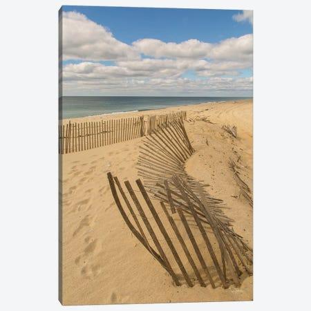 Beach Dunes II Canvas Print #ALD45} by Aledanda Canvas Artwork