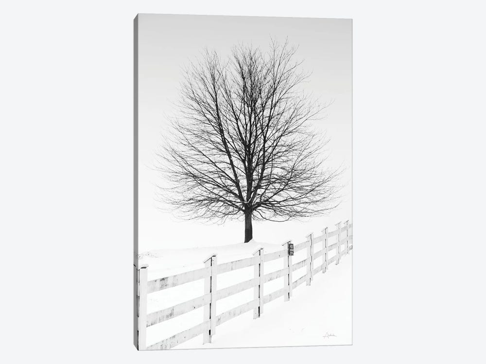 Along The Lane III 1-piece Canvas Print
