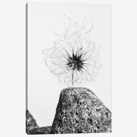 Electrifying Canvas Print #ALD52} by Aledanda Canvas Art