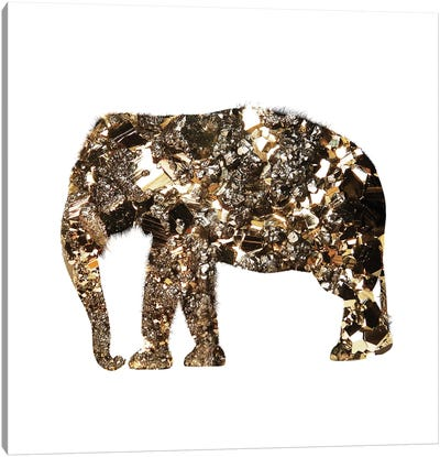 Golden Elephant Canvas Art Print