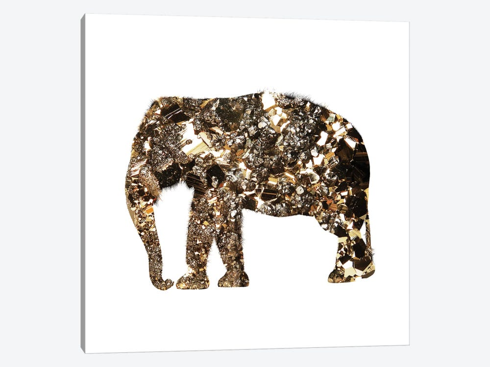 Golden Elephant by Andreas Lie 1-piece Canvas Art