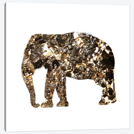 Golden Elephant Canvas Print #ALE101} by Andreas Lie Canvas Wall Art