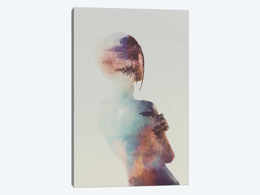 For Free by Andreas Lie 1-piece Canvas Wall Art