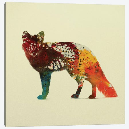 Foxy Canvas Print #ALE104} by Andreas Lie Art Print