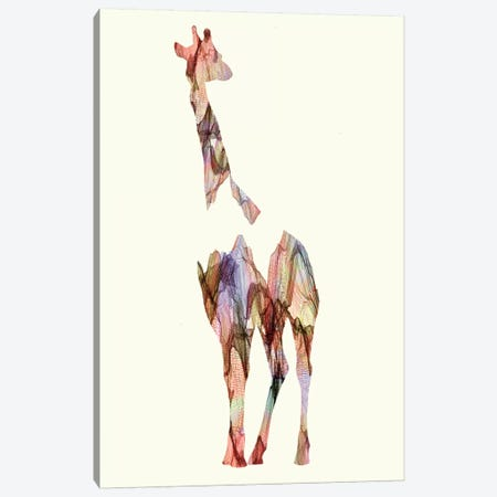 Giraffe Canvas Print #ALE105} by Andreas Lie Canvas Print