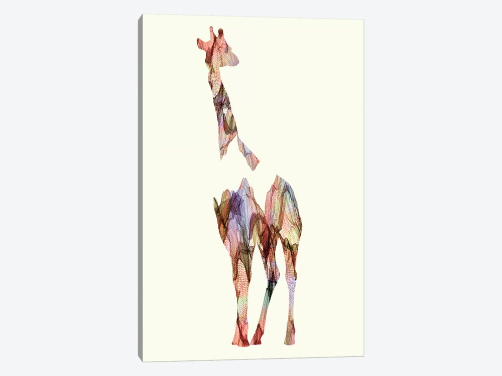 Giraffe by Andreas Lie 1-piece Canvas Wall Art