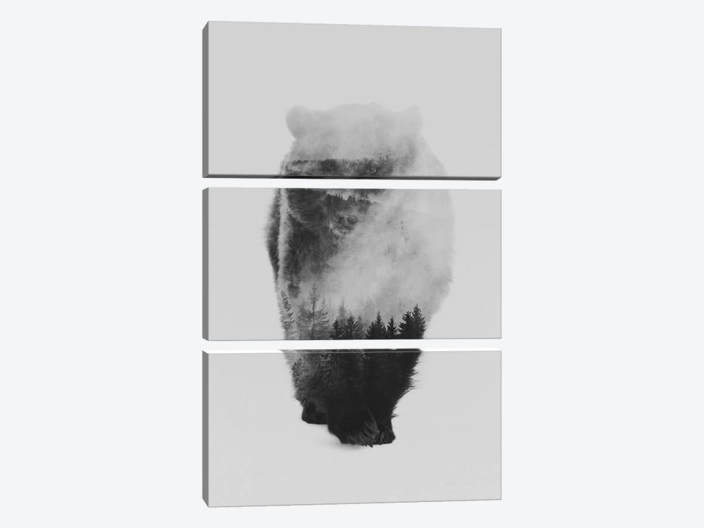 Approaching Bear in B&W by Andreas Lie 3-piece Canvas Art Print