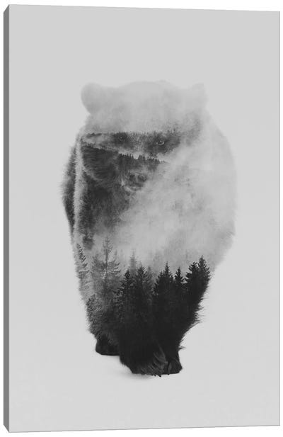 Approaching Bear in B&W Canvas Art Print