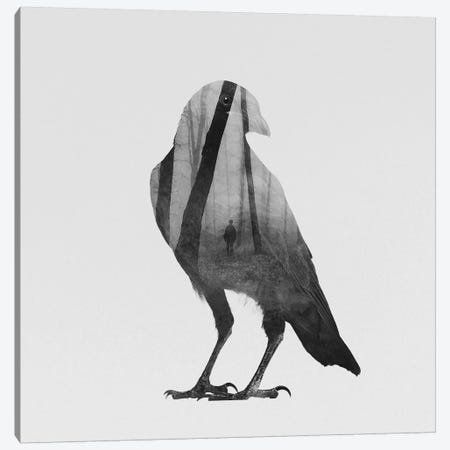 Crow in B&W Canvas Print #ALE113} by Andreas Lie Art Print