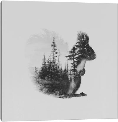 Ekorn II in B&W Canvas Art Print