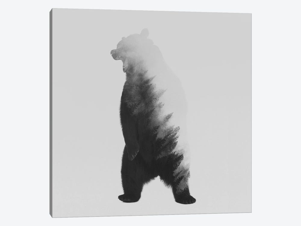 The Bear in B&W 1-piece Art Print