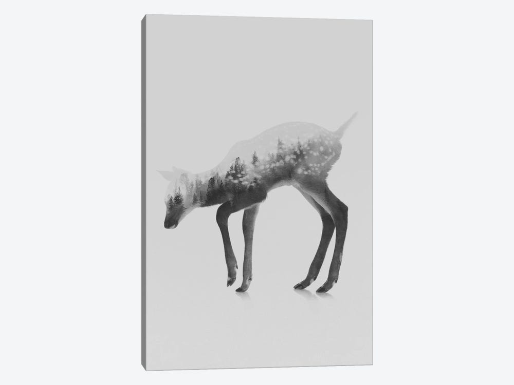 The Deer I in B&W by Andreas Lie 1-piece Canvas Wall Art