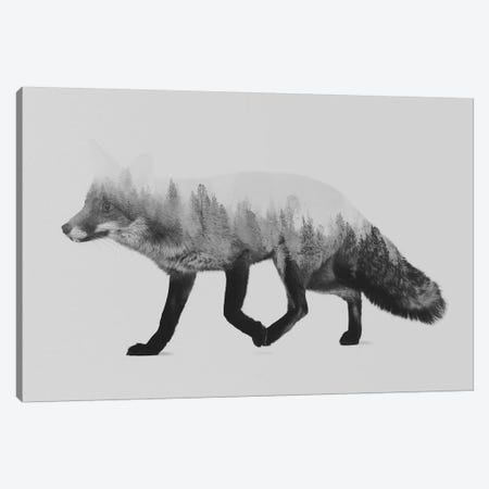 The Fox I in B&W Canvas Print #ALE127} by Andreas Lie Art Print