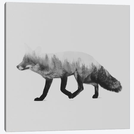The Fox II in B&W Canvas Print #ALE128} by Andreas Lie Canvas Wall Art