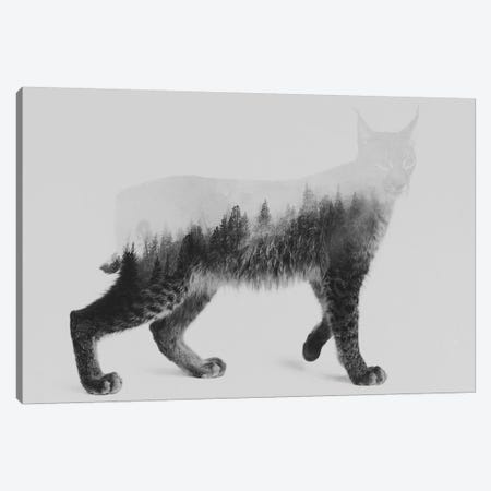 Lynx I in B&W Canvas Print #ALE129} by Andreas Lie Canvas Art