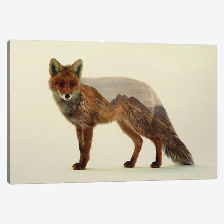 Mountain Fox Canvas Print #ALE12} by Andreas Lie Art Print