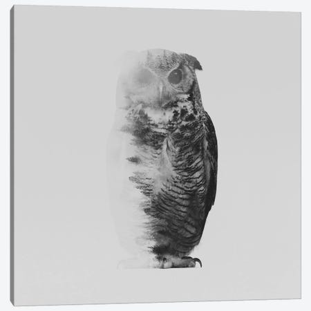 The Owl II in B&W Canvas Print #ALE132} by Andreas Lie Canvas Print