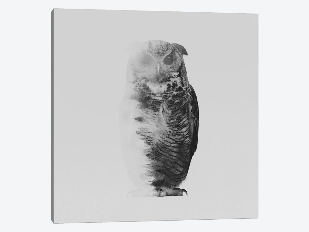 The Owl II in B&W by Andreas Lie 1-piece Canvas Art
