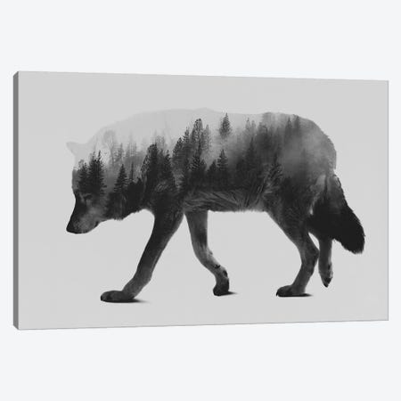 The Wolf I in B&W Canvas Print #ALE133} by Andreas Lie Art Print