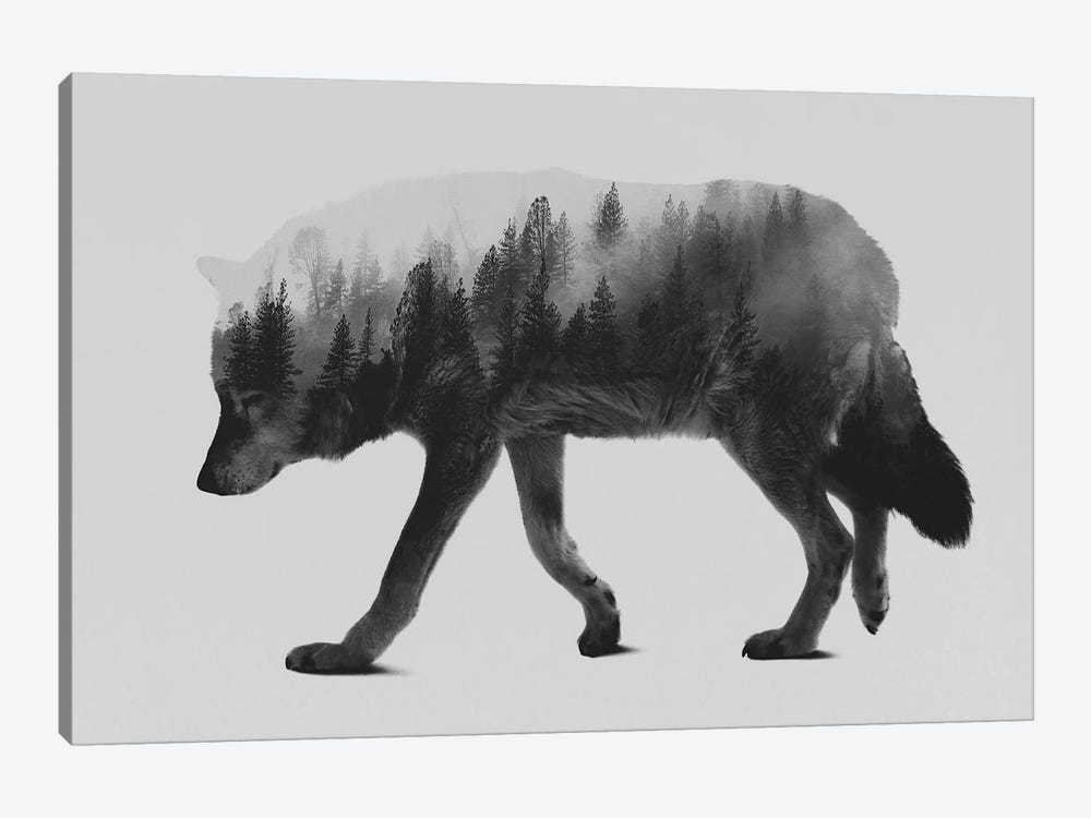 The Wolf I in B&W by Andreas Lie 1-piece Canvas Art Print
