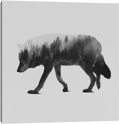 The Wolf II in B&W Canvas Art Print