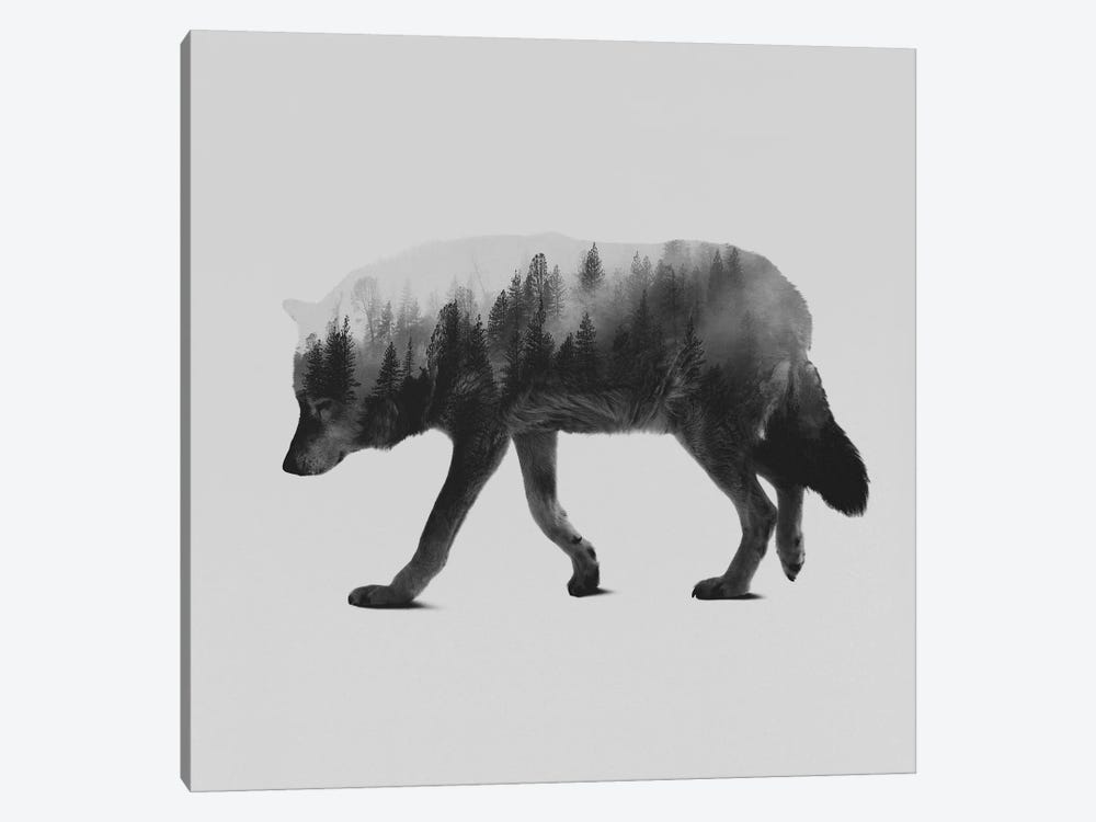 The Wolf II in B&W by Andreas Lie 1-piece Canvas Artwork