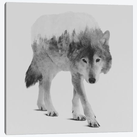 Wolf In The Woods IV in B&W Canvas Print #ALE135} by Andreas Lie Canvas Wall Art