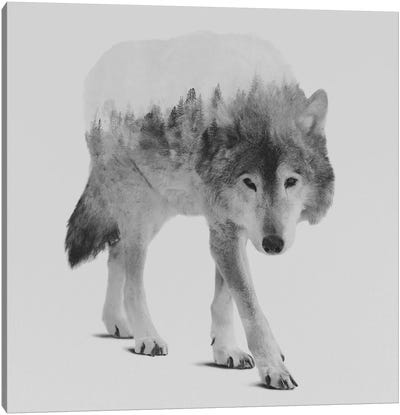Wolf In The Woods IV in B&W Canvas Art Print