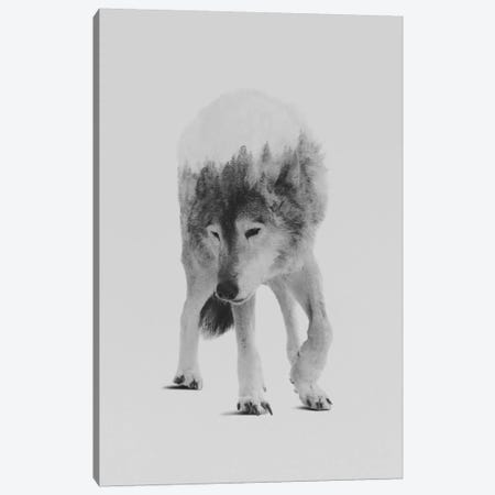 Wolf In The Woods I in B&W Canvas Print #ALE136} by Andreas Lie Canvas Wall Art