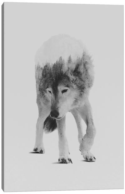 Wolf In The Woods I in B&W Canvas Print #ALE136
