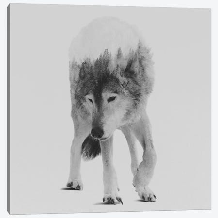 Wolf In The Woods III in B&W Canvas Print #ALE137} by Andreas Lie Canvas Art