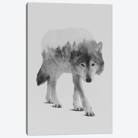 Wolf In The Woods II in B&W Canvas Print #ALE138} by Andreas Lie Art Print