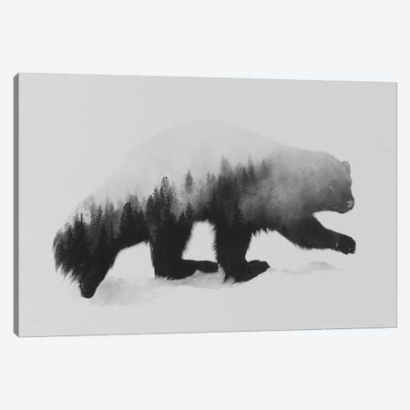 Wolverine I in B&W Canvas Print #ALE139} by Andreas Lie Canvas Art Print