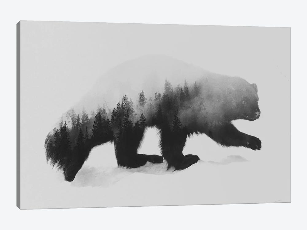 Wolverine I in B&W by Andreas Lie 1-piece Canvas Art Print