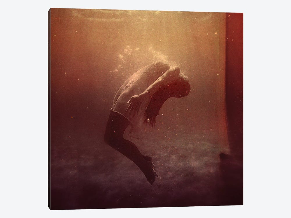 In The Deep by Andreas Lie 1-piece Canvas Art