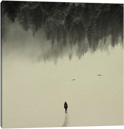 Silent Walk Canvas Art Print