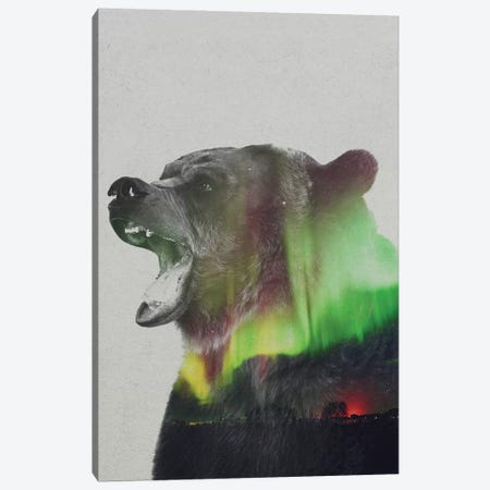 Aurora Borealis Series: Bear Canvas Print #ALE150} by Andreas Lie Art Print