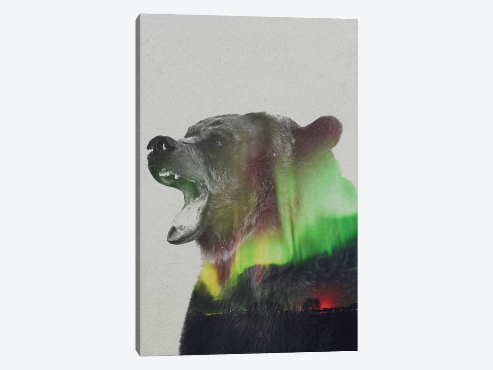 Aurora Borealis Series: Bear by Andreas Lie 1-piece Canvas Artwork