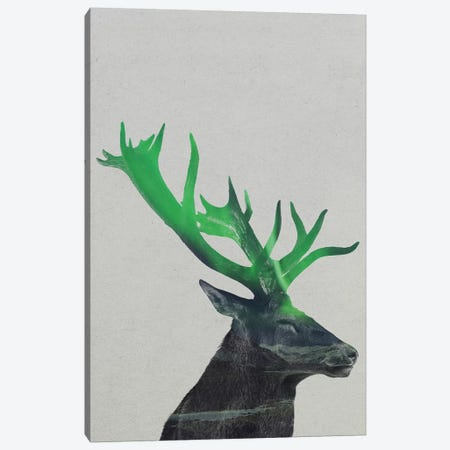 Aurora Borealis Series: Deer Canvas Print #ALE151} by Andreas Lie Art Print