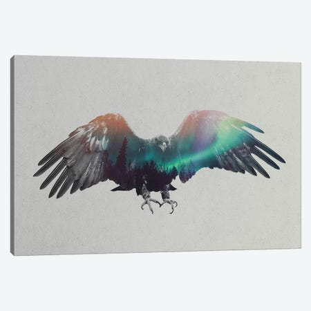 Aurora Borealis Series: Eagle Canvas Print #ALE152} by Andreas Lie Canvas Print