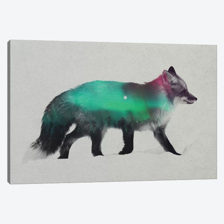 Aurora Borealis Series: Fox Canvas Print #ALE153} by Andreas Lie Art Print