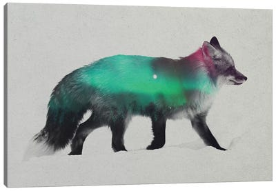 Aurora Borealis Series: Fox Canvas Art Print