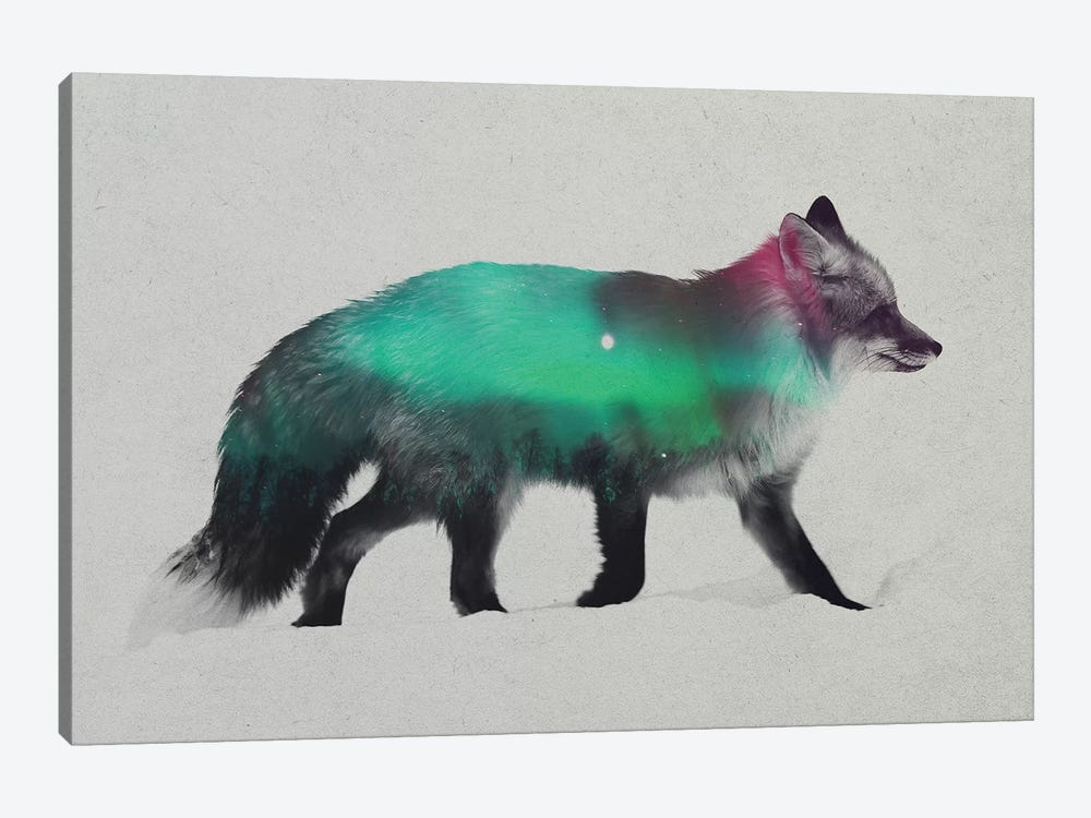 Aurora Borealis Series: Fox by Andreas Lie 1-piece Canvas Print